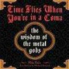 Time Flies When You're in a Coma: The Wisdom of the Metal Gods - Mike Daly, Mark Weiss, Michael Azerrad