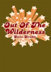 Out Of The Wilderness - Steve Stroble