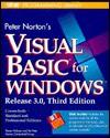 Norton's Visual Basic (Brady Programming Library) - Steven Holzner