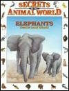 Elephants: Gentle Land Giants - Eulalia Garcia