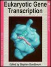Eukaryotic Gene Transcription - Stephen Goodbourn, B. David Hames, David M. Glover