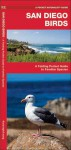 San Diego Birds: A Folding Pocket Guide to Familiar Species - James Kavanagh, Raymond Leung