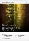 Neurons and Networks in the Spinal Cord - Lea Ziskind-Conhaim, Paul Stein, Joseph R. Fetcho, Shawn Hochman, Amy B. MacDermott