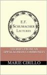 Stories from an Appalachian Community (Annual E. F. Schumacher Lectures) - Marie Cirillo, Hildegarde Hannum