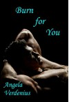 Burn for You (Gully's Fall Book 1) - Angela Verdenius