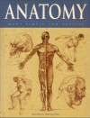 Anatomy , Made Simple For Artists - Jonathan Fremantle