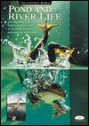 Pond and River Life - Barron's Educational Series, ticktock