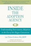 Inside the Adoption Agency: Understanding Intercountry Adoption in the Era of the Hague Convention - Jean Nelson-Erichsen
