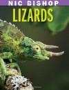 Nic Bishop: Lizards - Nic Bishop