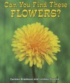 Can You Find These Flowers? - Carmen Bredeson, Lindsey Cousins