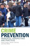 Crime Prevention: Principles, Perspectives and Practices - Adam Sutton, R.D. White, Adrian Cherney