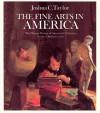 The Fine Arts in America (The Chicago History of American Civilization) - Joshua C. Taylor