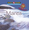 Mares = Seas - JoAnn Early Macken