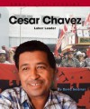 Cesar Chavez: Labor Leader - David Seidman