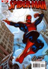 Amazing Spider-Man Vol 1# 523 - New Avengers Part Five: Extreme Measures - Joseph Michael Straczynski, Mike Deodato Jr.