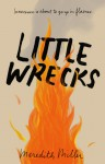 Little Wrecks - Meredith Miller