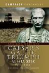 Caesar's Gallic Triumph: Alesia 52BC - Peter Inker
