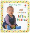 Little Book of Little Babies - Keith Furnival, Kate Rimmer