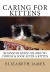 Caring for Kittens: Beginners Guide on How to Look After a Kitten - Elizabeth James