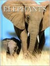 Elephants (Snapshot Picture Library Series) - Fog City Press