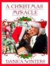 A Christmas Miracle - Danica Winters