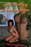 The Slave in the Garden - Teagan Rand