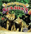 Changing Seasons - Bobbie Kalman, Kelley Macaulay