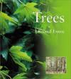 Trees - Roland Ennos