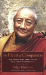 The Heart of Compassion: The Thirty-seven Verses on the Practice of a Bodhisattva - Dilgo Khyentse, Padmakara Translation Group, Mattieu Ricard
