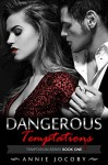 Dangerous Temptations: Temptations Series Book One: The Gallagher Family - Annie Jocoby