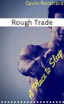 Rough Trade: A Place to Sleep - Gavin Rockhard
