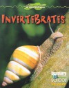 Invertebrates - Gareth Stevens Publishing, Kathleen Feeley