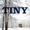 Tiny Houses - Mimi Zeiger