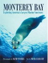 Monterey Bay: Exploring the Nation's Largest Marine Sancutuary - Michael Rigsby, Michael Rigsby, David Wrobel