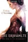 Die Erwählte (Der Weg in die Dunkelheit, #1) - Erica O'Rourke