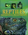 Encyclopedia Of Reptiles, Amphibians & Invertebrates A Complete Visual Guide - Noel Tait