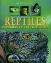 Encyclopedia Of Reptiles, Amphibians & Invertebrates A Complete Visual Guide - Noel Tait