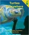 Turtles Everywhere - Ryan Durney