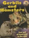 Gerbils and Hamsters - Sally Morgan