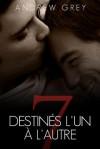 Destines L'Un A L'Autre - Andrew Grey, Lea Fournier