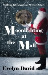 Moonlighting at the Mall - Evelyn David