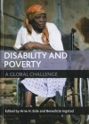 Disability and Poverty: A Global Challenge - Arne H. Eide, Benedicte Ingstad