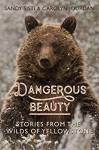 Dangerous Beauty: Stories from the Wilds of Yellowstone - Sandy Sisti, Carolyn Jourdan