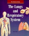The Lungs and Respiratory System (Human Body (HarperCollins)) - Steve Parker
