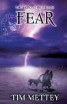 Fear - Tim Mettey