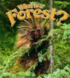 What Is a Forest? - Bobbie Kalman, Smithyman Kathryn, Kathryn Smithyman