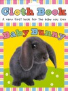 Cloth Book Baby Bunny - Roger Priddy
