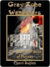 Gray Zone Wanderers - Cherri Dohlen