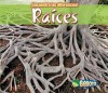 Raices = Roots - Charlotte Guillain