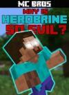 Why Is Herobrine So EVIL? - MC Bros
